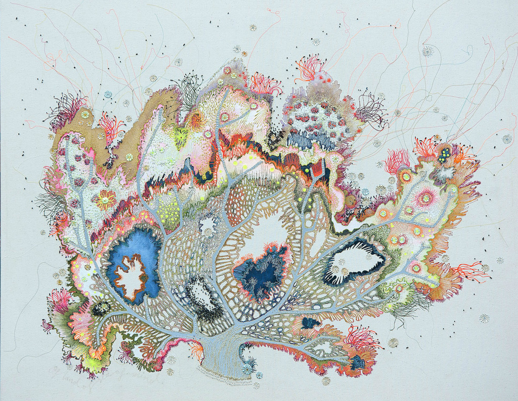 Textile Curator | Louise Gardiner