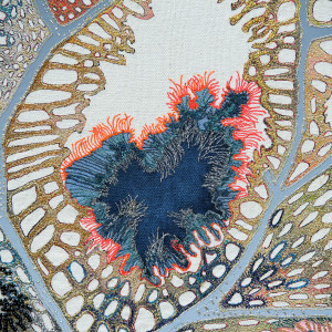 Textile Artist Louise Gardiner, Coral, Free Machine Embroidery, Painting and Applique