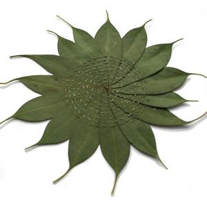 AliceFox EucalyptusCircle