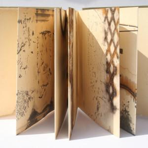 AliceFox TideMarksBook#49