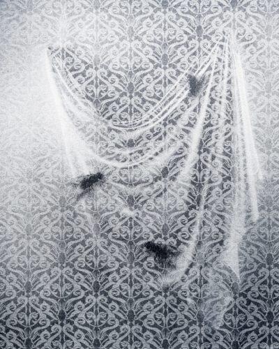 Kristina Aas, Drapery_with_flies_2013_156x195cm_digital_jacquard_weave_wool