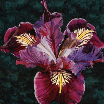 Natalie Fisher Iris textile curator