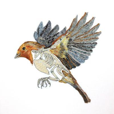 Janine Heschl Bird n Bones