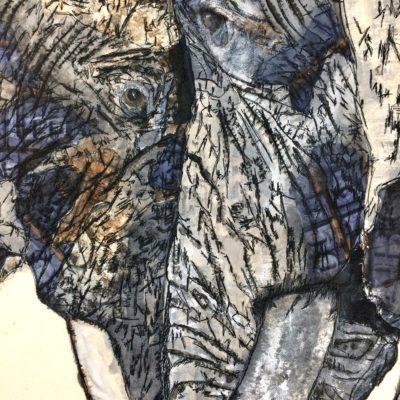 Janine Heschl, Elephants